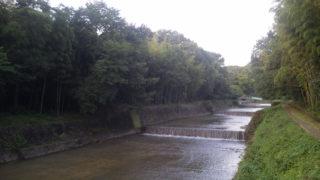 雨の後の三股川